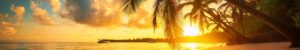 Marco Island, FL - Broker